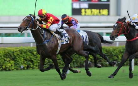 Long shot Winning Delight thunders to victory under Zac Purton. Photos: Kenneth Chan