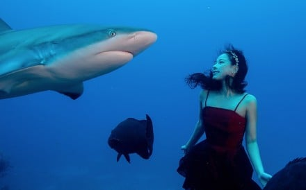Hong Kong model and actress turned ocean conservationist Hidy Yu. Photo: Handout