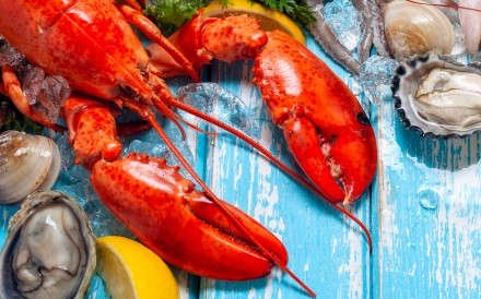 A selection of lobster and other seafood. Photo: Shutterstock