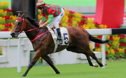 Regency Legend romps to a commanding win at Sha Tin on Sunday. Photos: Kenneth Chan