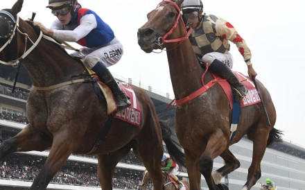 Glorious Artist finishes strongly in the Korea Cup at Seoul. Photos: HKJC