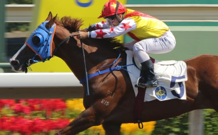 Matthew Poon punches out Elite Boy at Sha Tin on Saturday. Photos: Kenneth Chan