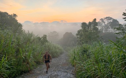 The Coast-to-Coast running trail in Singapore allows you to cross the entire country via a network of parks and forests.