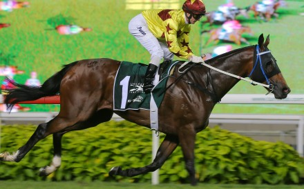 Southern Legend wins the Kranji Mile in Singapore last season. Photos: Kenneth Chan