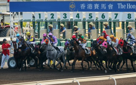 Horses jump to race at Sha Tin. Photos: Kenneth Chan