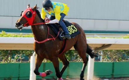 Winning Method trials on the Sha Tin all-weather track under Grant van Niekerk. Photos: Kenneth Chan