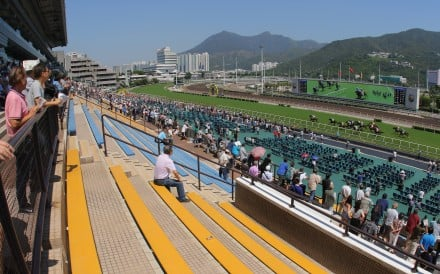 Fans watch the racing at Sha Tin. Photo: Kenneth Chan