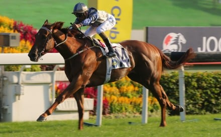 Aethero makes light work of the Jockey Club Sprint at Sha Tin on Sunday. Photos: Kenneth Chan