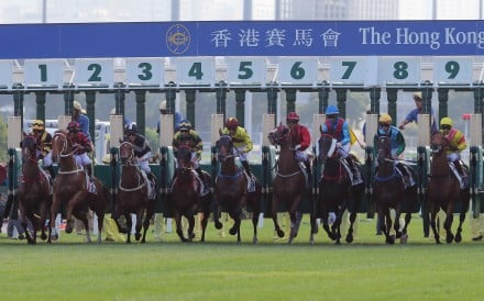 Horses jump in Sunday's Group Two Jockey Club Cup. Photos: Kenneth Chan