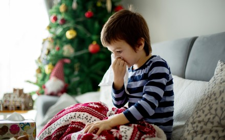 Christmas tree mould can cause asthma, allergies and other breathing issues. Experts give ways to address the problem. Photo: Shutterstock