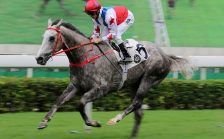Big Party wins at Sha Tin in May. Photos: Kenneth Chan