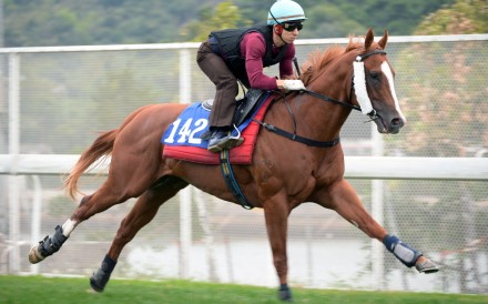 Matthew Chadwick gallops John Moore's Stronger at Sha Tin on Monday. Photos: Kenneth Chan