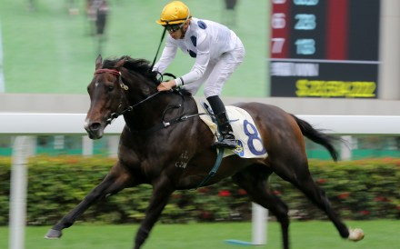Golden Sixty bolts clear at Sha Tin on Wednesday. Photos: Kenneth Chan
