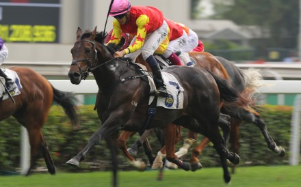 Farhh Above monsters the line to win at Sha Tin on Saturday. Photos: Kenneth Chan