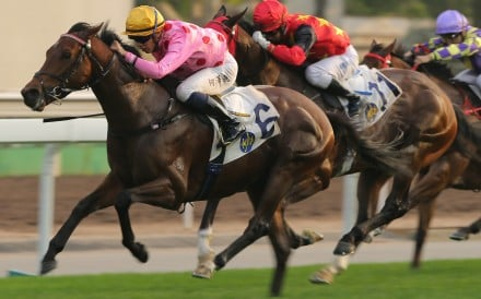Vincent Ho boots Preciousship to victory at Sha Tin on Saturday. Photos: Kenneth Chan