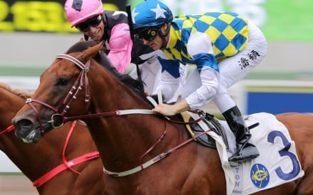 Computer Patch wins ahead of Beauty Applause at Sha Tin last month. Photos: Kenneth Chan