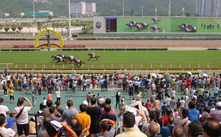Fans watch the races at Sha Tin. Photos: Kenneth Chan