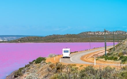 The five-star, 68-room resort will come up close to the Hutt Lagoon, a large pink lake in Western Australia popular among tourists. Photo: Shutterstock