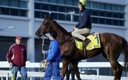 John Moore looks over Aethero after trackwork in December. Photos: Kenneth Chan