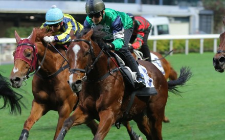 Glorious Spectrum (centre) trials at Happy Valley this season. Photos: Kenneth Chan