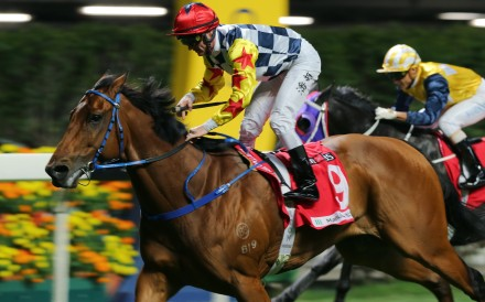 Zac Purton guides Amazing Star to victory at Happy Valley in January. Photos: Kenneth Chan