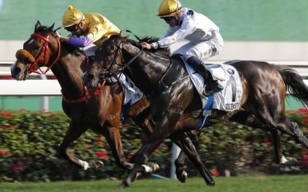 Blake Shinn and Playa Del Puente (left) do everything in their power to hold out Golden Sixty in the Hong Kong Derby. Photo: Kenneth Chan