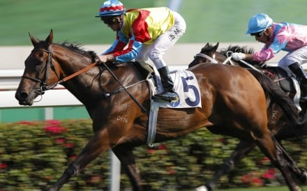 Zac Purton cruises to victory on Wellington at Sha Tin yesterday. Photos: Kenneth Chan
