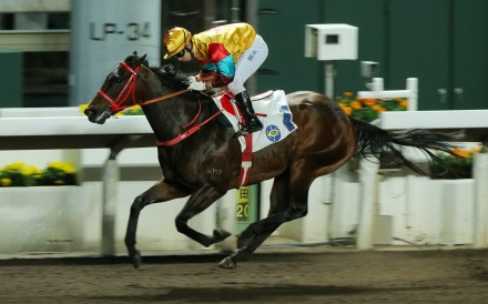 Big Time Baby wins at Sha Tin in February. Photos: Kenneth Chan