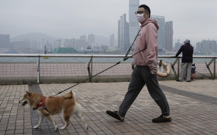 A man wearing a protective mask walks his dog in Hong Kong on March 6. Photo: AP