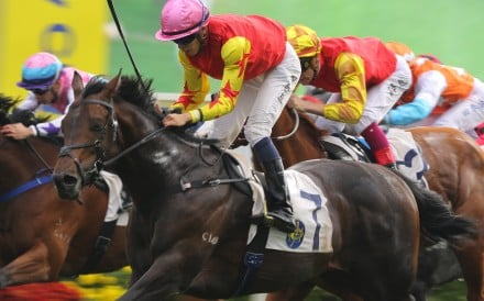 Farhh Above wins under jockey Vincent Ho at Sha Tin in January this year. Photos: Kenneth Chan