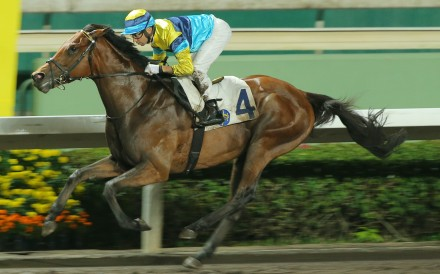 Righteous Doctrine salutes at Sha Tin on April 1. Photos: Kenneth Chan