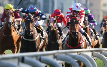 Horses race up the straight at Sha Tin. Photos: Kenneth Chan