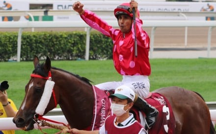 Mr Stunning returns after winning the Chairman's Sprint Prize on Sunday. Photos: Kenneth Chan