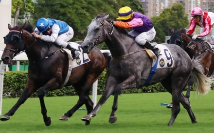 Helena Baby (purple silks) is narrowly beaten last month at Sha Tin. Photos: Kenneth Chan