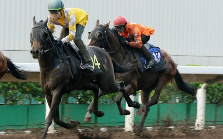 Chad Schofield trials recent stable-change galloper Mighty Power at Sha Tin. Photos: Kenneth Chan