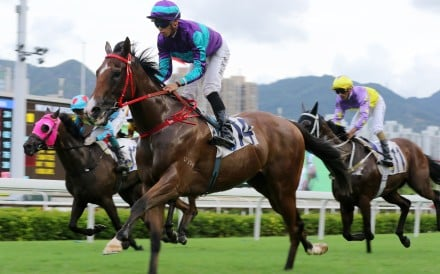 Winning Dreamer coasts to victory under Vincent Ho at Sha Tin last season. Photos: Kenneth Chan