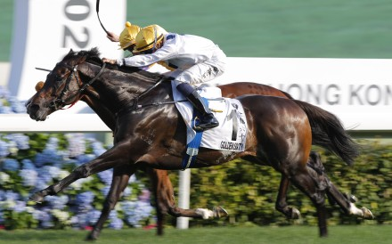 Vincent Go drives Golden Sixty to victory in the Hong Kong Derby. Photos: Kenneth Chan