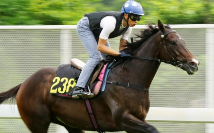 Vincent Ho gallops Golden Sixty down the Sha Tin back straight last week. Photos: Kenneth Chan
