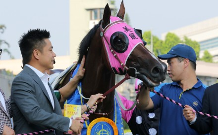 Patrick Kwok gives Beauty Generation a pat after winning the 2019 Celebration Cup. Photos: Kenneth Chan