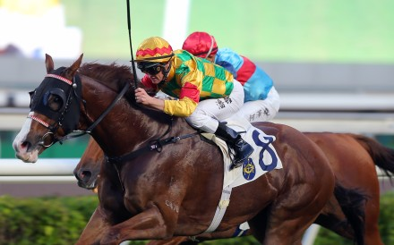 Mighty Giant dashes to victory at Sha Tin on Thursday. Photos: Kenneth Chan