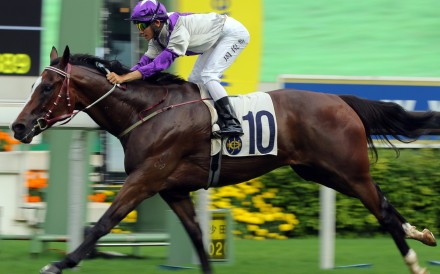 Buddies salutes under Jerry Chau at Sha Tin last season. Photos: Kenneth Chan