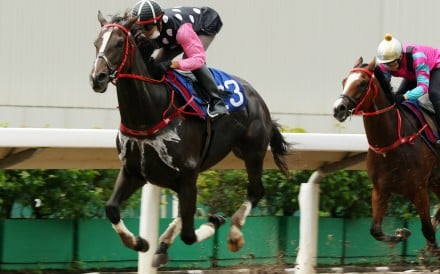 Beauty Legacy wins a trial on the all-weather track in September. Photos: Kenneth Chan
