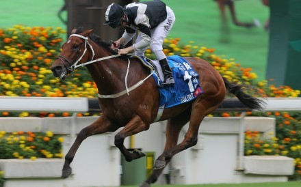 Zac Purton cruises to victory in the Group One Champions & Chater Cup last season. Photos: Kenneth Chan