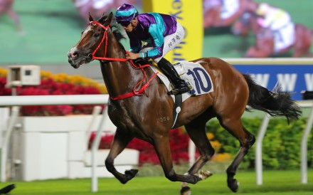 Winning Dreamer makes it five wins on the trot at Sha Tin on Sunday. Photos: Kenneth Chan