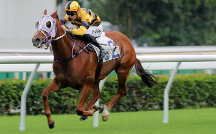 Team Spirit goes on to win under Tony Piccone at Sha Tin on Sunday. Photos: Kenneth Chan
