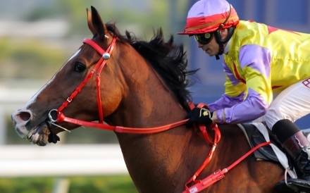 Alexis Badel salutes on Ping Hai Bravo at Sha Tin on Sunday. Photo: Kenneth Chan