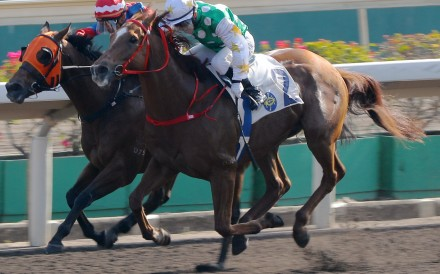 Alfred Chan lifts Golfman Star past Happy Tango at Sha Tin on Sunday. Photos: Kenneth Chan