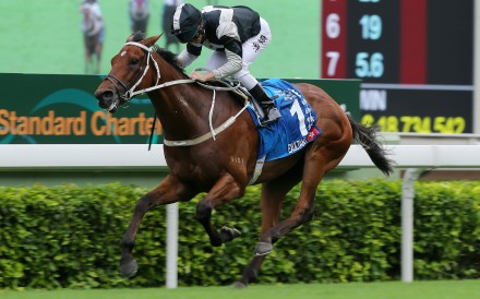 Exultant wins the Champions & Chater Cup at Sha Tin in May. Photos: Kenneth Chan