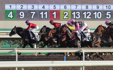 Horses race at Sha Tin on Boxing Day. Photos: Kenneth Chan