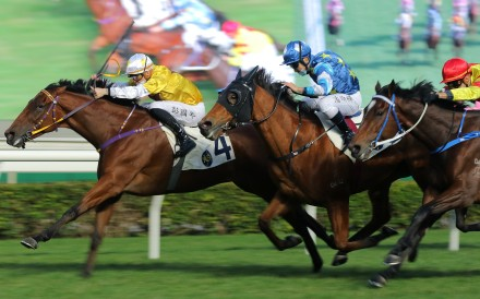 Not Usual Talent edges out Lucky Patch and Enrich Delight at Sha Tin on Sunday. Photos: Kenneth Chan